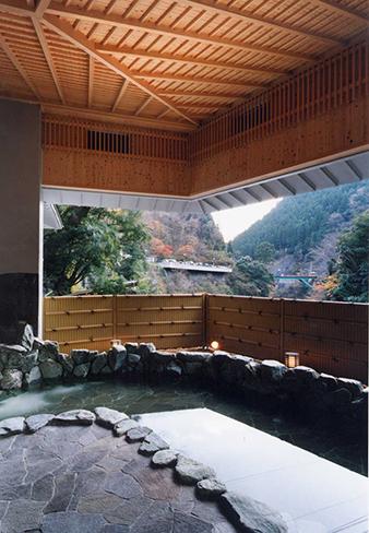 龍神村温泉センター